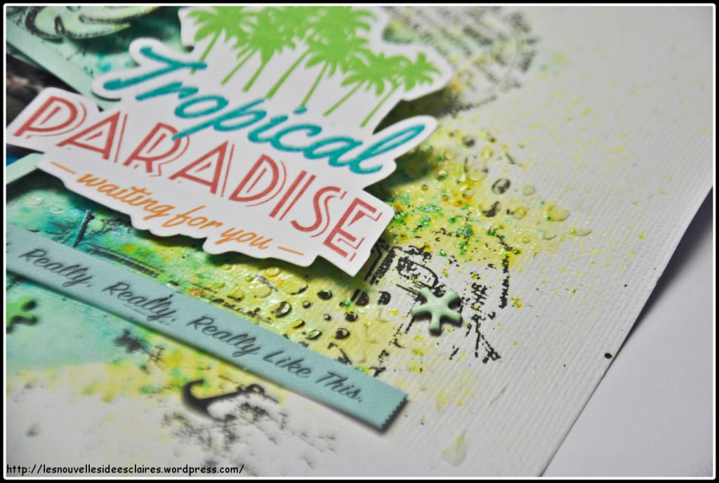 tropical-paradise-06