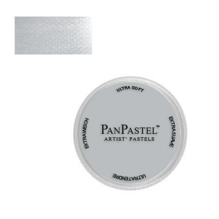 Payne's Grey Tint 2