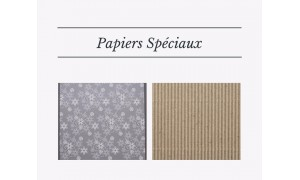 Special papers